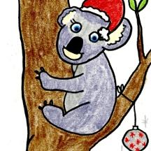 chrissy koala