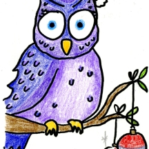 chrissy owl
